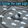 Follow my own sign