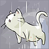 коти и дожик - мск