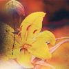 Счастливица-унца унца дрицаца: там лилии цветут
