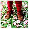 Striped feet II