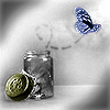 butterfly jar released