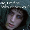 Frodo Baggins of Bag End: I'm Fine
