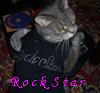 Tiger: Rock Star