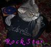 Tiger: Rock Star