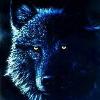 lonewolfe001