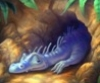 plush_dragons userpic