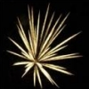 Deborah Layne: fireworks