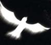 a_digital_ghost userpic