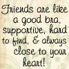 Friends are like a good bra