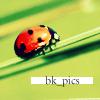 bk-pics