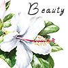 Laura: hibiscus