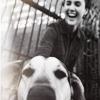 Felicity Dog