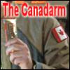 rusty_armour: canadarm