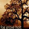 Fog Grove - A LiveJournal ElfQuest Fan Holt