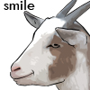 GoatSmiling