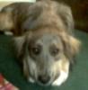 kawii01 userpic