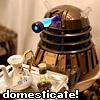 DW domesticate!