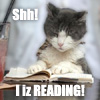 lolcat, reading