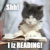 jennifer_dunne: reading