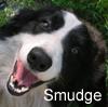 Smudge