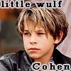 little_wulfson userpic