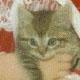 dremfindr userpic