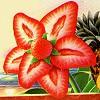 strawberry, flower