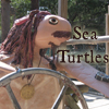 Captain Jack Sea Turtle