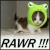 Silly cat piccy ~ Rawr