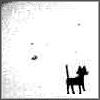 vomit_bunny: Cat