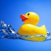 lenkusa: купается
