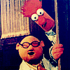 muppets - bunson and beeker