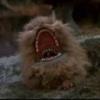 fuzzy, fizzgig, tantrum