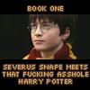 HP: fucking asshole Potter