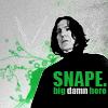 Harry Potter - Snape BigDamnHero