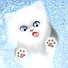 imaginism studios: kitty