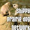 prairie_team