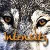 WildHoney [userpic]