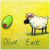 olive ewe