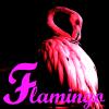 flamingoslim