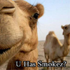CAMEMEL!