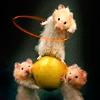 Talitha: jillicons hoola hamster
