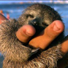 The Queen of Spades: Huggy Sloth
