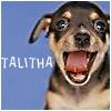 Talitha: beet bubba yawn