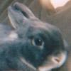 bunito userpic