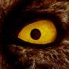 ityv userpic