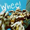 Whee! by sakebi