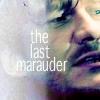 [hp] the last marauder