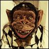 v_otaku: ape!!!