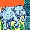 No 1 Ladies - Elephant